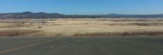 Folsom Lake Crop